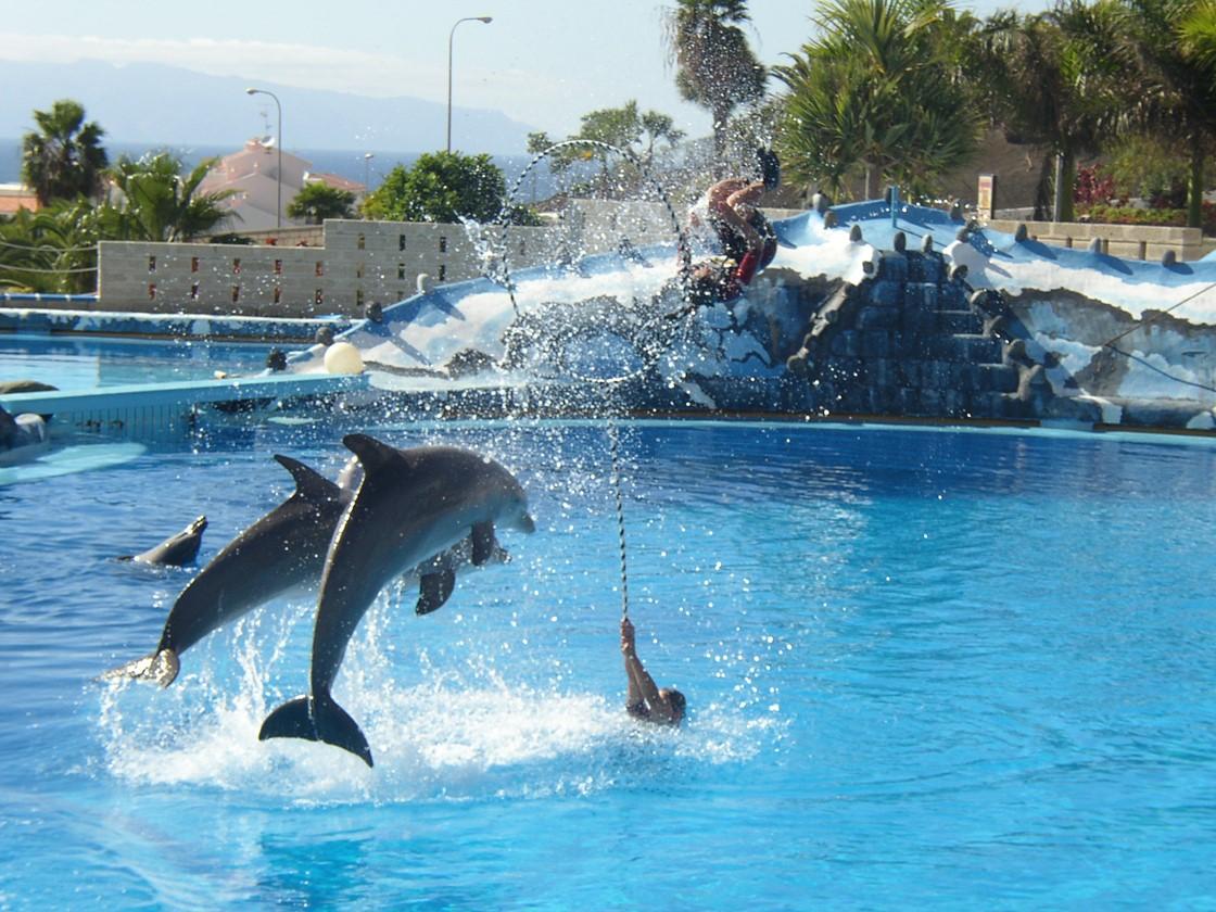 Aquapark Feb 04 23