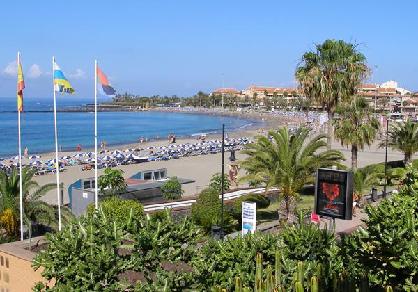 Tenerife Apr 11 1 032