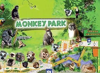 Monkey Park Monkey Park3jpg 0X800x0x120958 Crhq